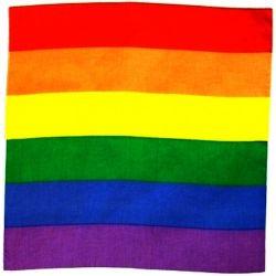 Bandana>Rainbow
