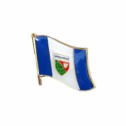 Flag Pin>NWT