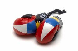 Boxing Gloves>Antigua