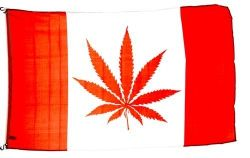 3'x5'>CDA Marijuana Red leaf