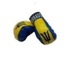 Boxing Gloves>Barbados