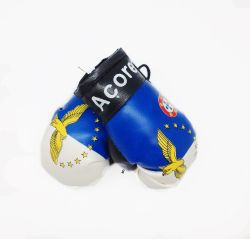 Boxing Gloves>Azores