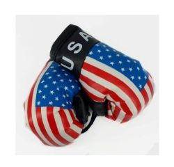 Boxing Gloves>USA