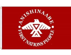 3'x5' Flag>Anishinaabe