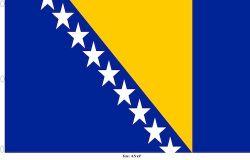 Flag 4.5x9ft>Bosnia Premium